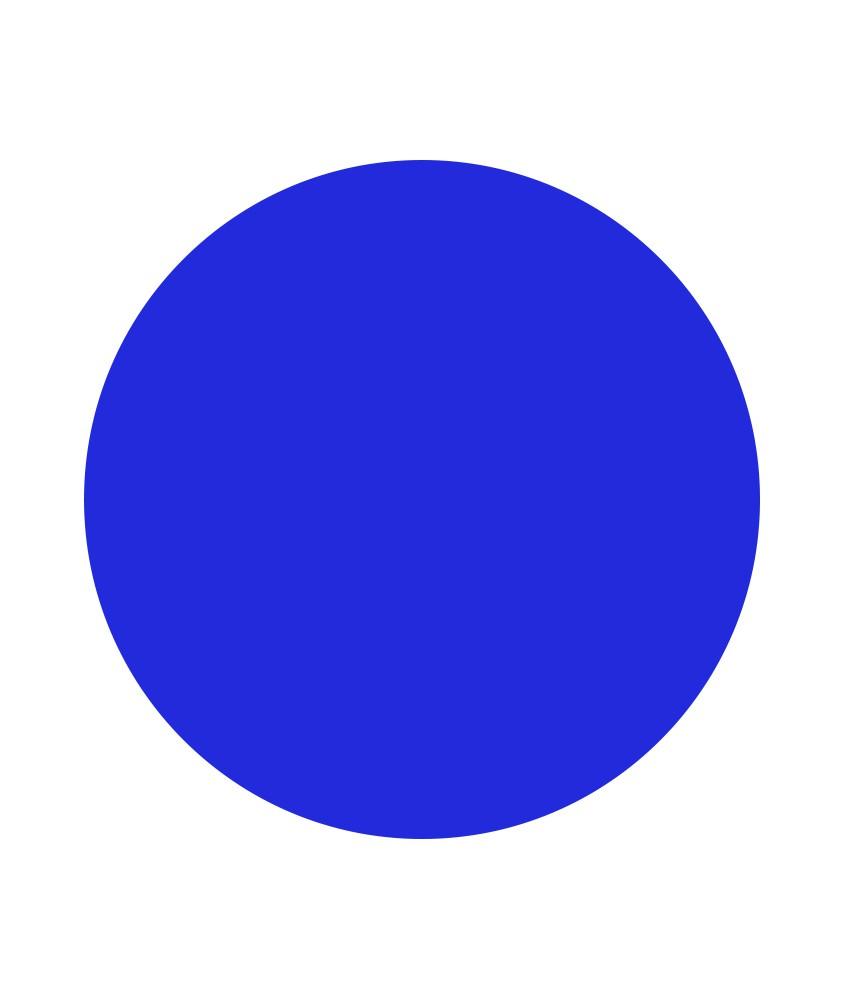 Disque bleu pour Pic'Jalonnette FENO 1124-047