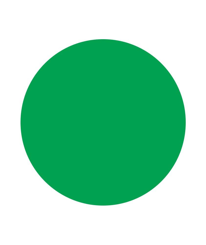 Disque vert pour Pic'Jalonnette FENO 1126-047